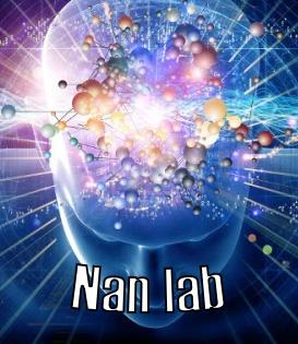 NanLab